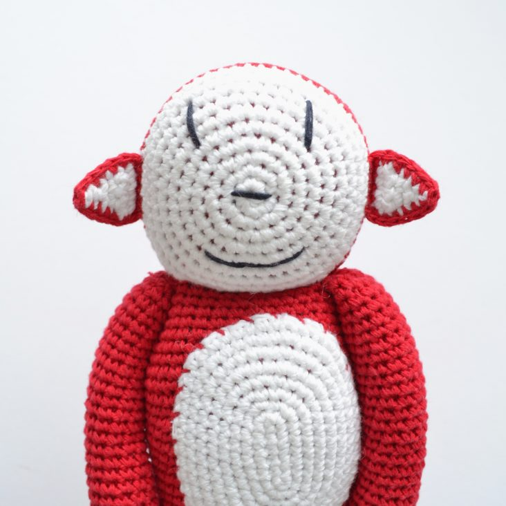 crochet monkey's school photo